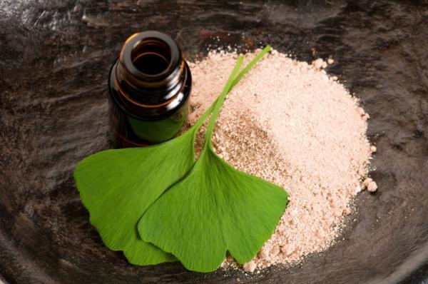Ginkgo biloba: propiedades, para qué sirve y contraindicaciones