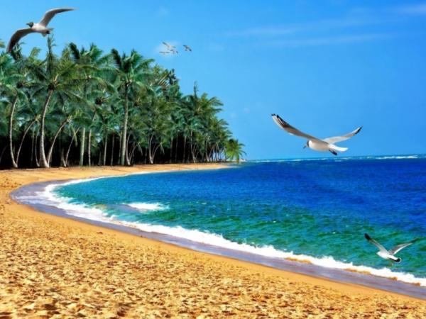 Por qué en las zonas costeras hace más calor - Por qué hace más calor en la costa que en el interior