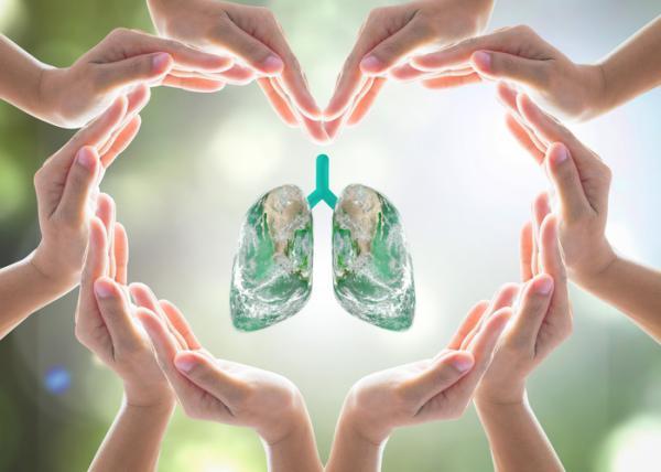 Qué es riesgo ambiental y ejemplos - Consecuencias de no valorar los riesgos ambientales