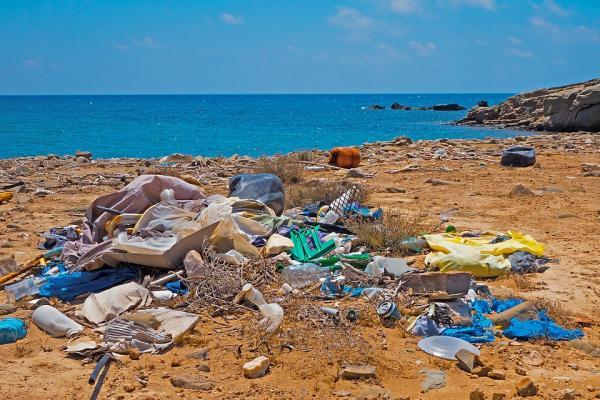 Contaminación por plásticos: causas, consecuencias y soluciones - Consecuencias de la contaminación plástica