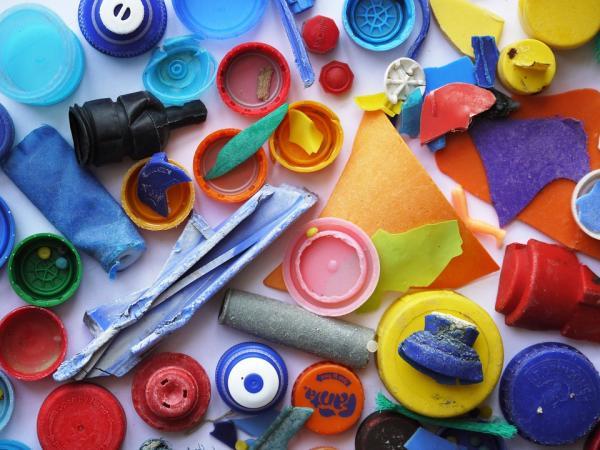 Contaminación por plásticos: causas, consecuencias y soluciones