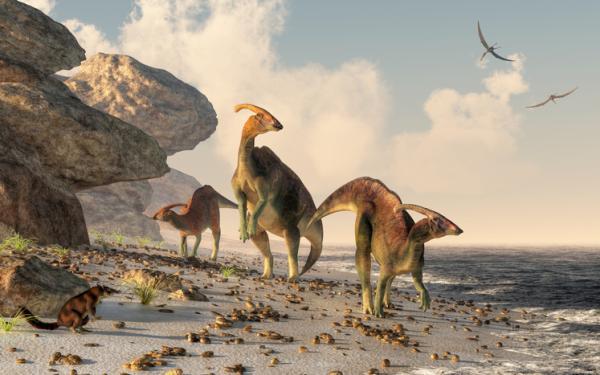Paleoecología: qué es, características e importancia