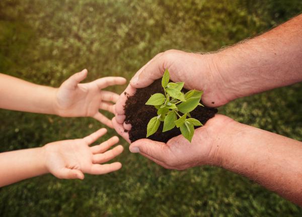 Conciencia ecológica: qué es y su importancia
