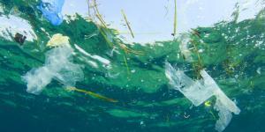 Biodegradación de plásticos: qué es y métodos