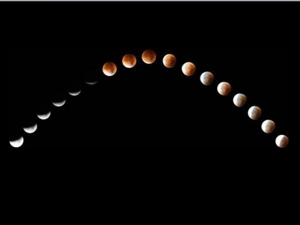 Cuál es la influencia de las fases de la luna en la agricultura - La influencia de las fases de la luna en la agricultura y los cultivos