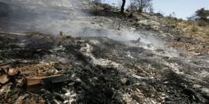 Consecuencias de un incendio forestal