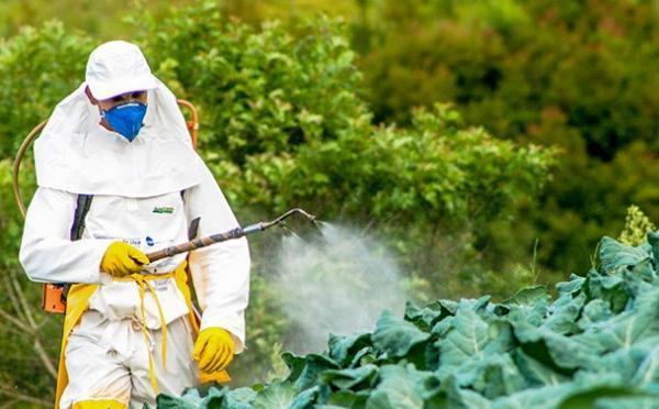 Cuáles son los agentes contaminantes del agua - Pesticidas que contaminan el agua