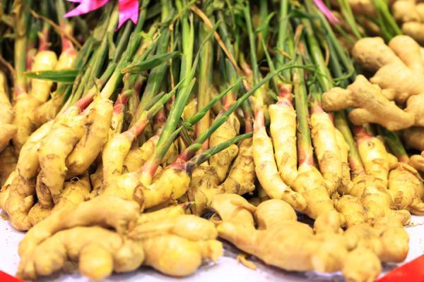 Tipos de raíces - Raíces comestibles - lista