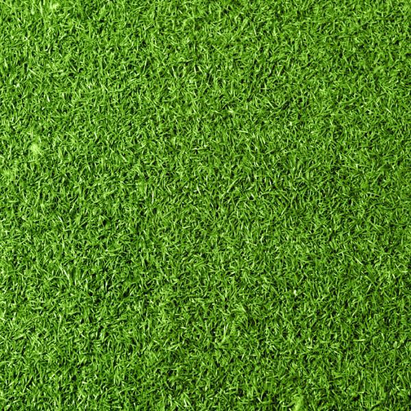 Cómo eliminar las malas hierbas del césped - Cómo arrancar las malas hierbas