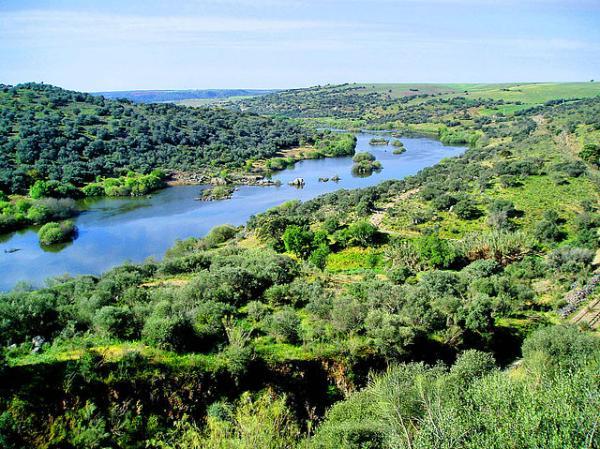 Qué es un afluente - Nombres de afluentes de España