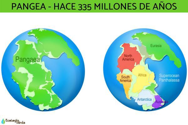 Cómo se formaron los continentes - Cómo se separaron los continentes de la Tierra
