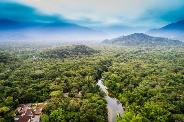 Regiones naturales de Colombia - Amazonia o región Amazónica colombiana