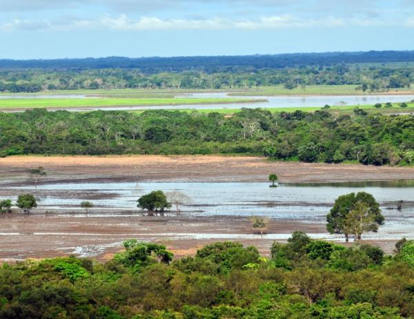 Regiones naturales de Colombia - Orinoquía