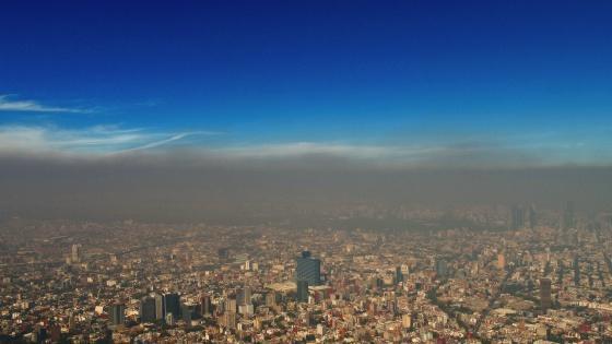 Principales causas de la contaminación ambiental en México