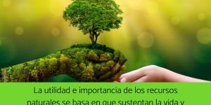 Cuál es la importancia de los recursos naturales