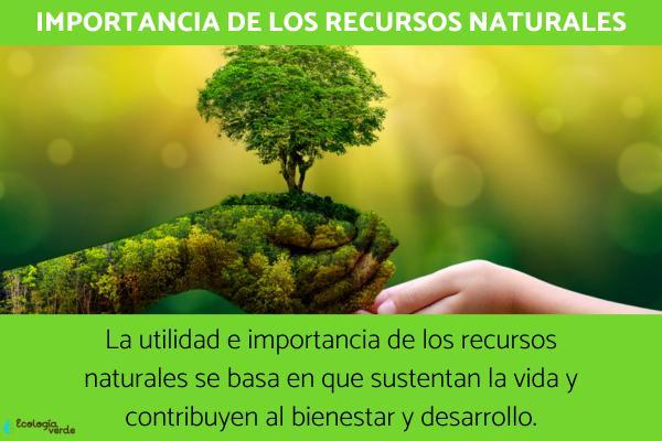 Cual Es La Importancia De Los Simbolos Naturales De Venezuela | cu 225 l es la importancia de los recuersos naturales econ 243 mica y social