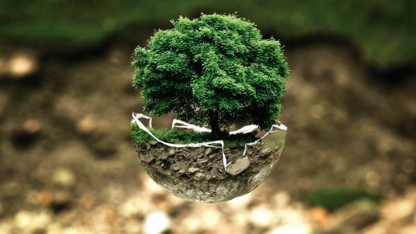 Qué es ingeniería ambiental - Razones para estudiar ingeniería ambiental