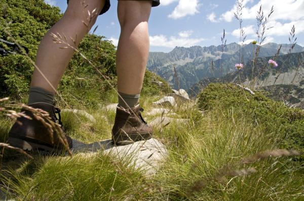 Actividades para cuidar el medio ambiente - Salidas al campo con el objeto de proteger o restaurar el medio ambiente