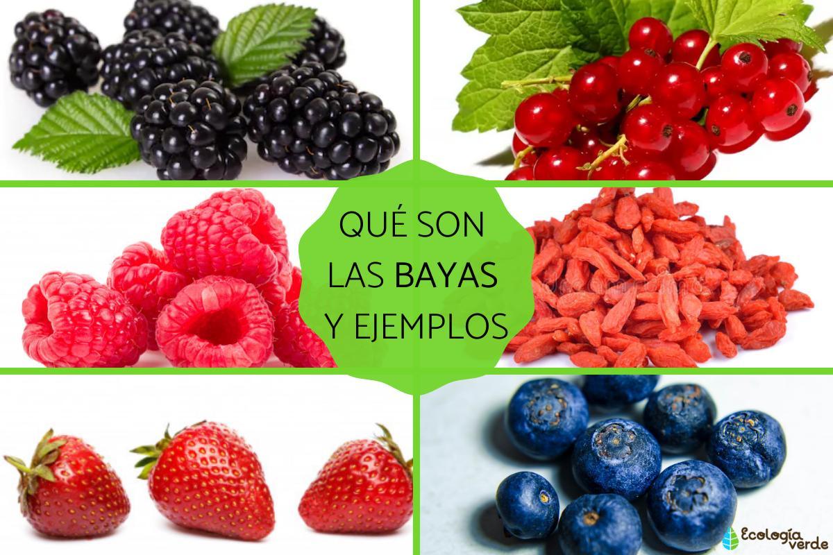 que_son_las_bayas_caracteristicas_tipos_y_ejemplos_3015_orig.jpg