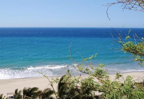 Las ecorregiones del Perú y sus características - El mar tropical en Perú