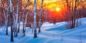 Solsticio de invierno de 2021: hemisferio norte y sur
