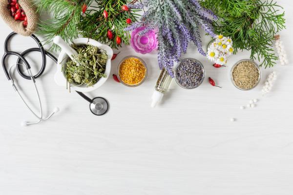 Fitoterapia: ¿qué es y cómo usar las plantas medicinales? - Cómo usar las plantas medicinales en fitoterapia