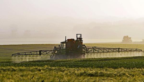 Agrotóxicos: qué son, tipos y uso - Qué son los agrotóxicos