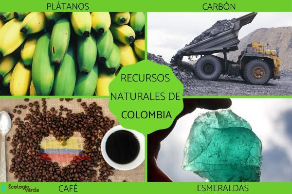 Recursos naturales de Colombia