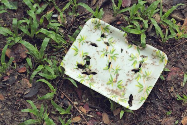 Cómo hacer plástico biodegradable con maicena - Cómo hacer plástico biodegradable con maicena paso a paso