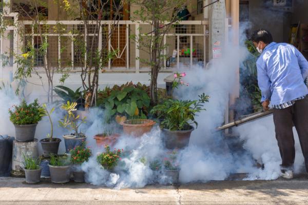 Cómo fumigar las plantas con productos naturales