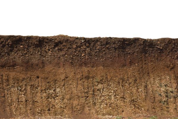 Tipos de suelos y sus principales características - Qué es el suelo