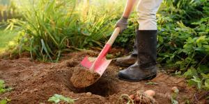 Qué es la horticultura