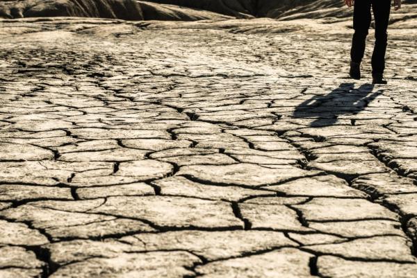 Qué es la degradación del suelo - Cómo evitar la degradación del suelo