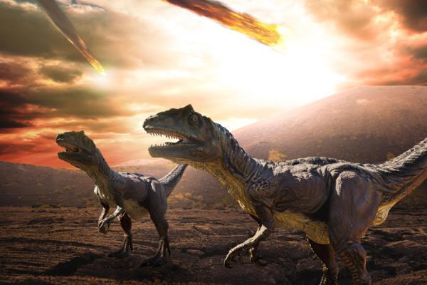 Extinciones masivas: qué son, causas y cuáles son - Qué son las extinciones masivas