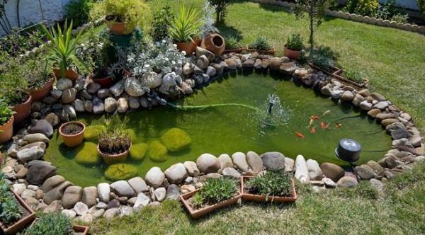 Cómo limpiar el agua verde de un estanque - Causas del agua verde de un estanque