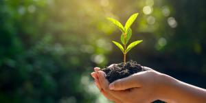 Consejos para ser más sostenible