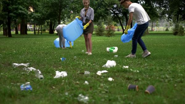 Cuánto tarda en degradarse el papel - Por qué es importante reciclar el papel