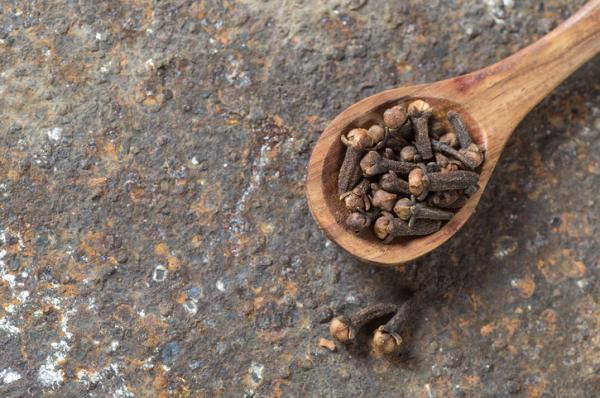 Clavo de olor: propiedades, para qué sirve y contraindicaciones - Clavo de olor: propiedades