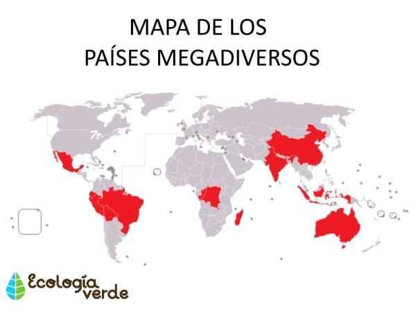 Qué es megadiversidad: significado y ejemplos - Continentes y países megadiversos