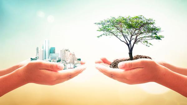 Qué es la ecología industrial con ejemplos - Cómo funciona un sistema de ecología industrial