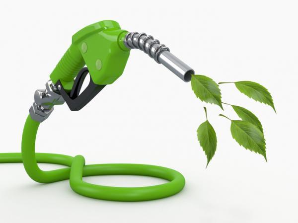 ¿El biocombustible es una energía renovable?