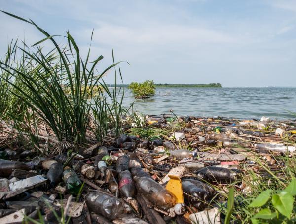 Contaminación de lagos y ríos: causas, consecuencias y cómo evitarla