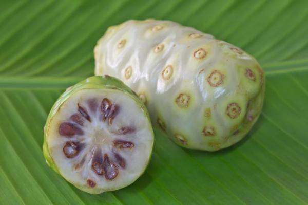 30 nombres de frutas tropicales raras - Fruta del diablo