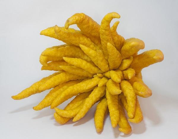 30 nombres de frutas tropicales raras - Mano de Buda