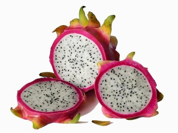 30 nombres de frutas tropicales raras - Pitahaya