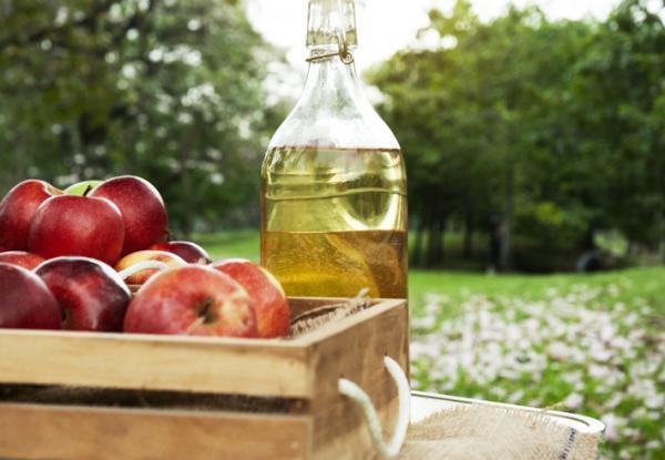 Vinagre para las plantas: beneficios y cómo utilizarlo