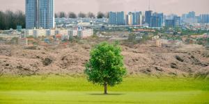 Contingencia ambiental: qué es, por qué existe y ejemplo de plan