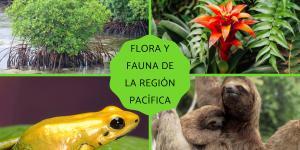 Flora y fauna de la Región Pacífica