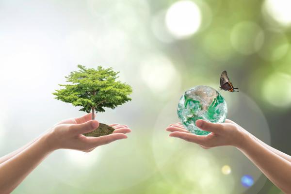 Cuáles son las leyes que protegen el medio ambiente - Las leyes que protegen la biodiversidad