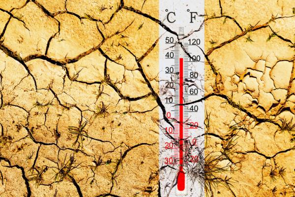 Cuáles son las leyes que protegen el medio ambiente - Leyes sobre el cambio climático